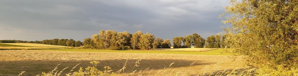 Großer Präßnicksee